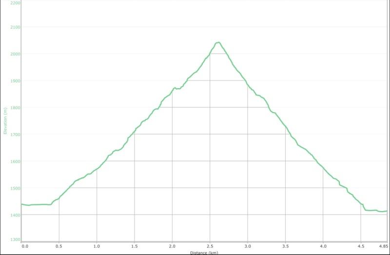 Mount Taylor Graph